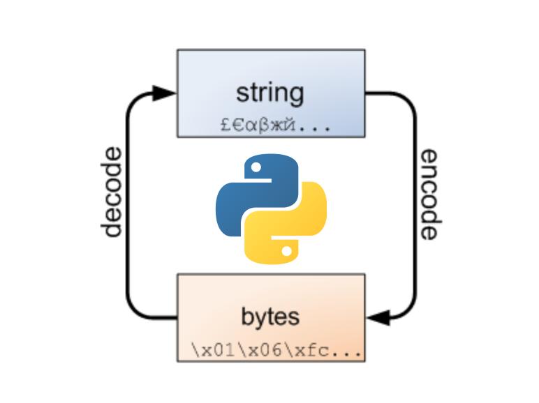 Data encoding/decoding in python | Source Dexter