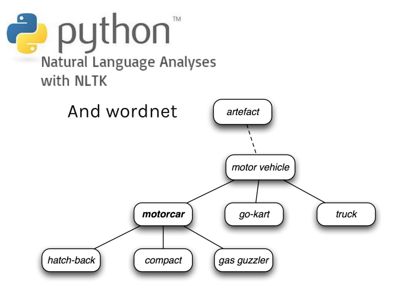 Find synonyms and hyponyms using Python nltk and WordNet